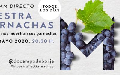 Muestra tus Garnachas, la apuesta por una nueva forma de comunicar de la D.O. Campo de Borja